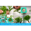 �ѡ��������� watercress